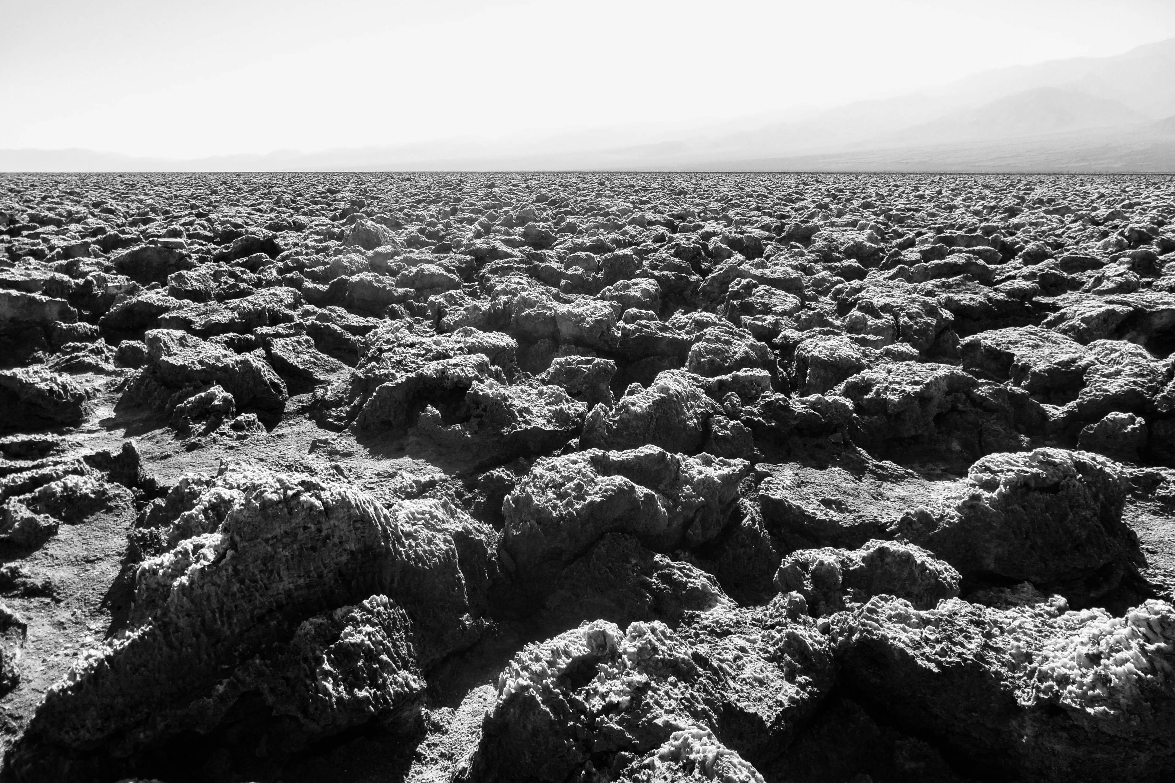 Devil's Corn Field in Death Valley